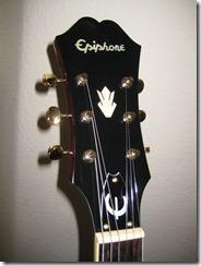 2009-07-21 Epiphone Riviera Custom P93 008
